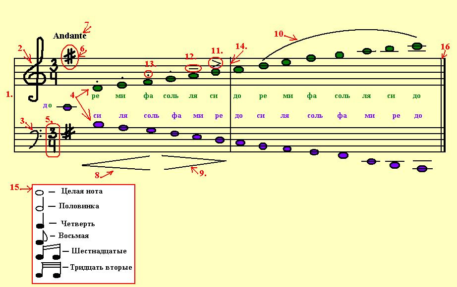 Нотный стан - система из пяти